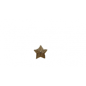 STAR PIN GOLD